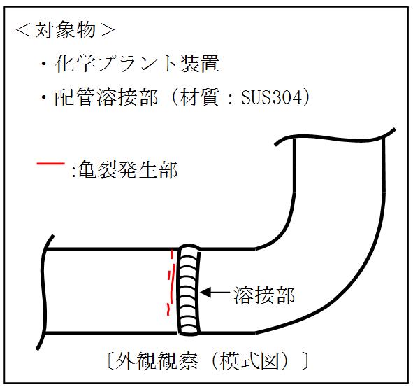 外観観察(模式図)
